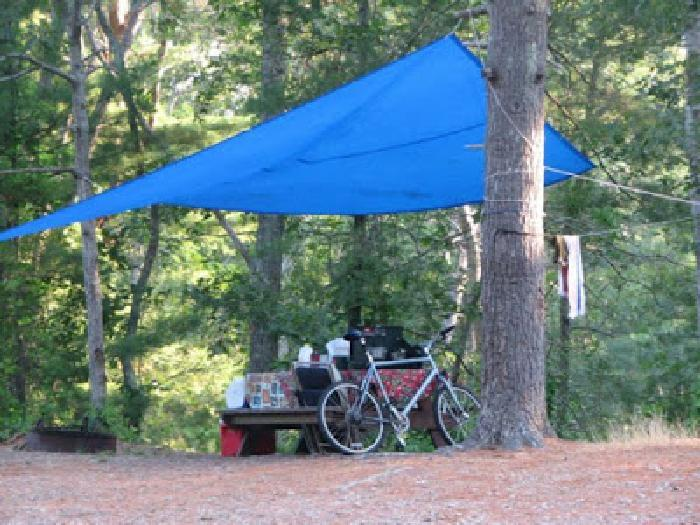 Nickerson State Park Trails